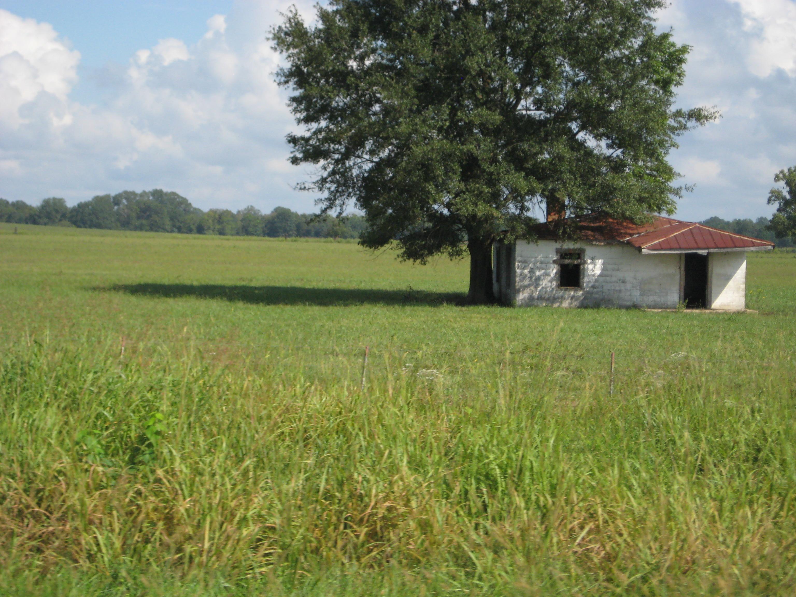house in Alabama Black Belt Highway 80